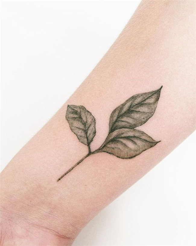 Gorgeous Leaf Tattoo Ideas and Inspirations - Today, we collected 60 leaf tattoo ideas. If you love nature, trees, tattoos – stay here for a few minutes. We have gathered the most beautiful tattoo ideas, so you will find the inspiration you seek! #LeafTattoos #Tattoos